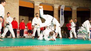 18-judo