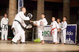 24-taekwondo